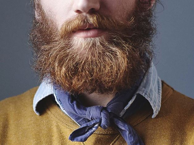 Picture for category Beard